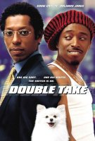 poster from double take